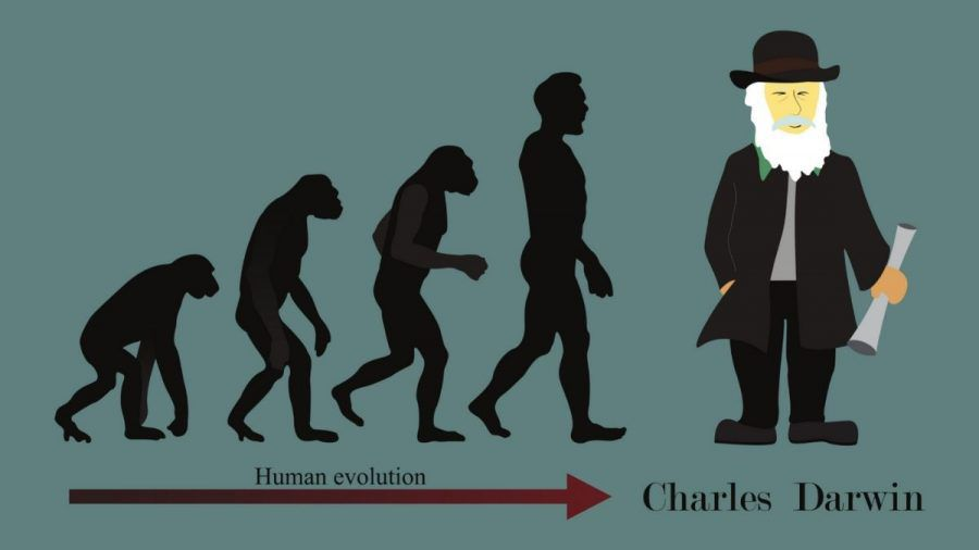 Darwin-Tag: Diese skurrilen Todesfälle gewannen den Darwin-Award