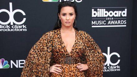 Demi Lovato: Diese Stars unterstützen sie nach emotionalen Geständnis
