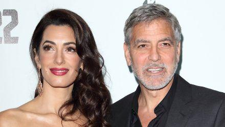 George Clooney: Sein neues Hobby ist die Hausarbeit