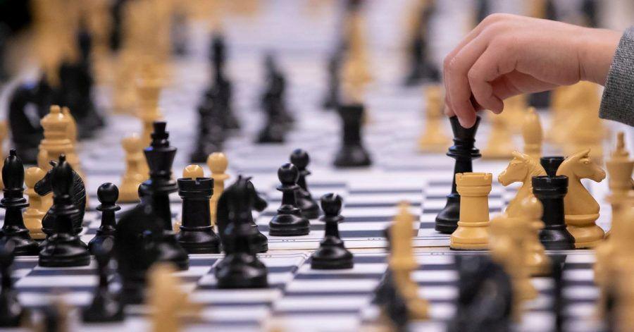 64 Felder, 32 Figuren - das königliche Spiel ist im Aufwind.