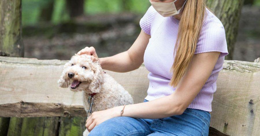 Damit beim Hund nicht nur Genuschel ankommt, sollten Hundebesitzer unter der Maske klar und deutlich sprechen.