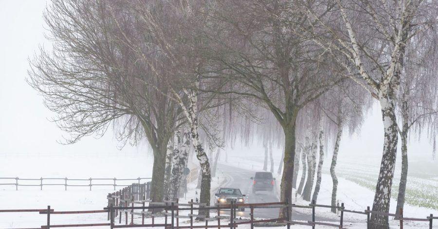 Besonders betroffen wird den Experten zufolge zufolge die Region vom Emsland und dem Münsterland bis hin zum Harz.
