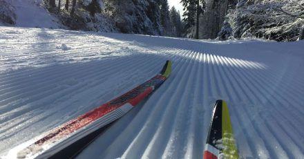Auf Skier durch den verschneiten Winterwald - wie hier im Fichtelgebirge: Langlauf ist längst kein Sport mehr für Rentner, sondern hip.