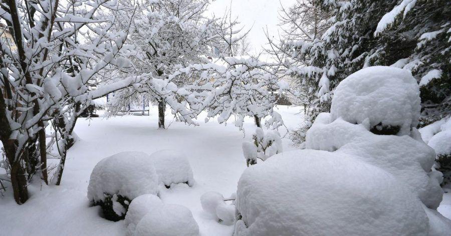 Frost kann zur Verbesserung der Bodenfruchtbarkeit beitragen.