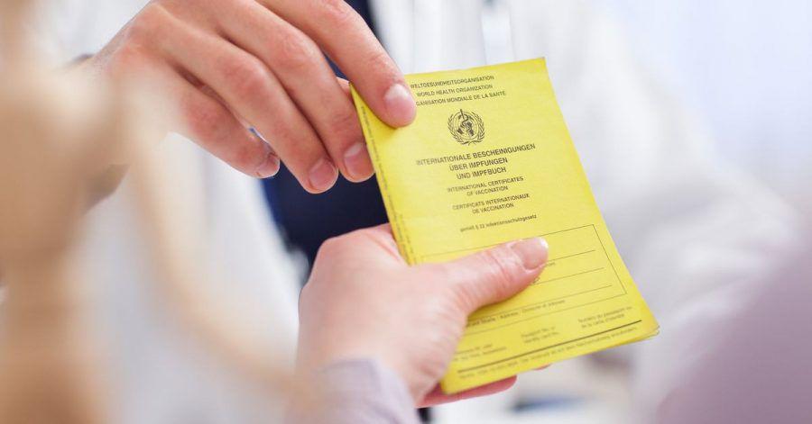 Besser, man passt gut auf ihn auf: Der Impfausweis ist ein wichtiges Dokument.