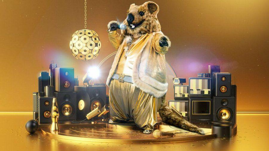 Das Quokka zeigt sich als goldiger DJ-Nager. (jom/spot)