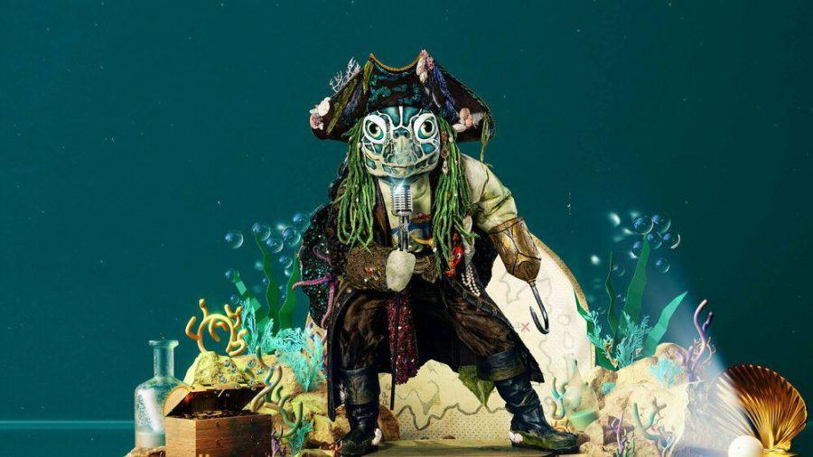 Die Schildkröte: Pirat und Reptil (stk/spot)