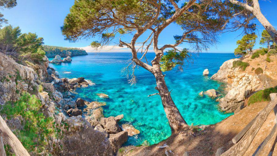 Ist ein Urlaub auf Mallorca bald nur noch mit Corona-Impfung möglich? (dr/spot)