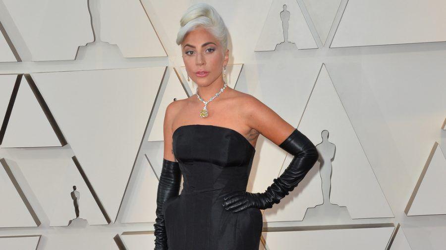 Zwei Hunde von Lady Gaga wurden entführt. (jom/spot)
