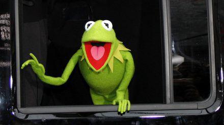 """Kermit der Forsch war bei """"The Masked Singer"""" die Schnecke. (dr/spot)"""