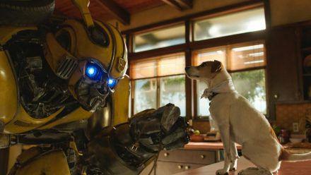 """""""Bumblebee"""" ist ein Spin-off und Prequel der """"Transformers""""-Reihe (rto/spot)"""