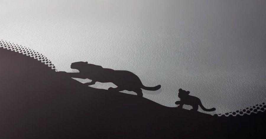 Folgt der Mama auf der Pfote: Ein Katzengespann geht entlang des schwarzen Scheibenrands bei Jaguar auf Pirsch.