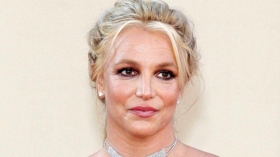 Das plant Britney Spears in diesem Jahr