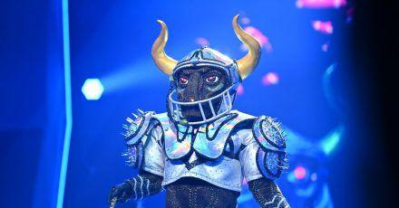 Guildo Horn ist «Der Stier».