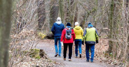 Spaziergänger sind in einem Wald im Naturschutzgebiet Riddagshausen unterwegs.