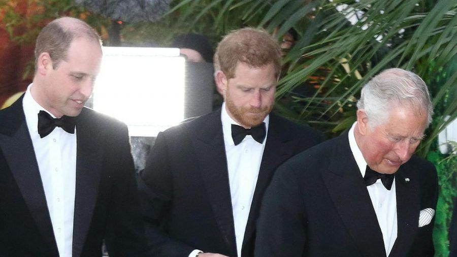 Können sich Prinz William (v.l.n.r.), Prinz Harry und Prinz Charles wieder versöhnen? (cos/spot)