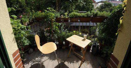 Von den Spuren der Wintermonate befreit, lockt der Balkon an sonnigen Frühlingstagen.