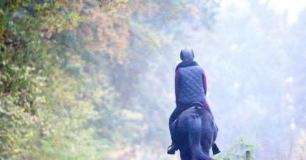 Wer ein Pferd auf dem Fahrrad überholen will, sollte mindestens 1,5 bis 2 Meter Abstand halten.