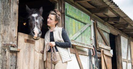 Wenn das Tier nicht auf der Weide steht, muss es jeden Tag bewegt werden. Pferdehalter sollten dafür etwa zwei Stunden täglich einplanen.