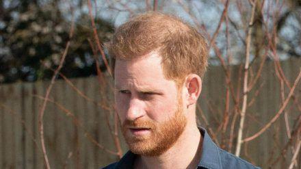 Prinz Harry ist mit seiner Familie in die USA ausgewandert. (hub/spot)