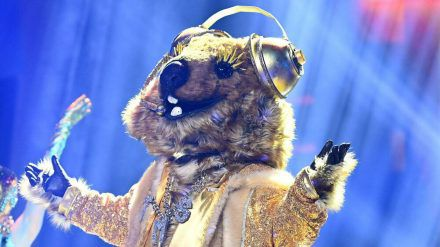 """Für das Quokka ist die """"The Masked Singer""""-Reise vorbei. (cos/spot)"""