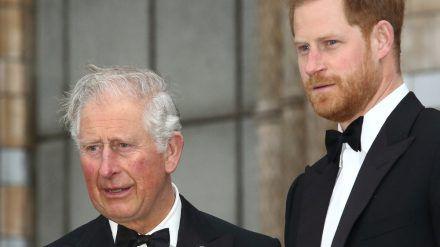 Können Prinz Charles und Prinz Harry ihre Probleme überwinden? (obr/spot)