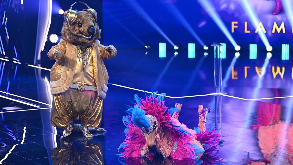 """""""The Masked Singer"""": Der Promi unter dem Quokka-Kostüm überrascht alle"""