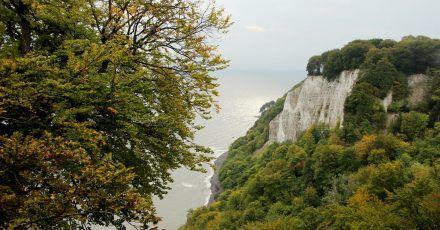 Die berühmten Kreidefelsen locken jedes Jahr viele Besucher in Rügens Nationalpark Jasmund - da will die Natur besonders geschützt werden.
