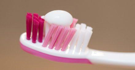 Erbsengroß: So viel Fluorid-haltige Zahnpasta sollte erst ab dem zweiten Geburtstag zweimal täglich auf der Bürste des Kindes sein.