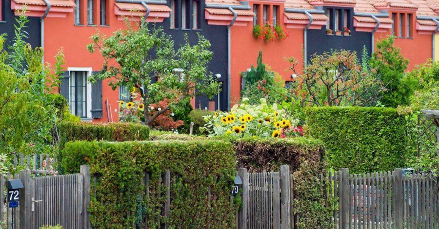 Freundlicher Eindruck dank Sonnenblumen: Auch bei Reihenhäusern können Bewohner ihren Vorgarten individuell gestalten.