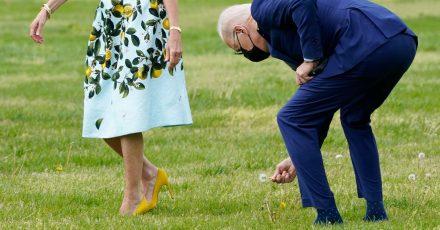 Joe Biden pflückt eine Pusteblume für die First Lady Jill Biden.