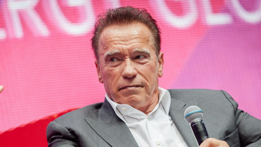 Arnold Schwarzenegger setzt sich gegen Umweltverschmutzung und den Klimawandel ein. (wue/spot)