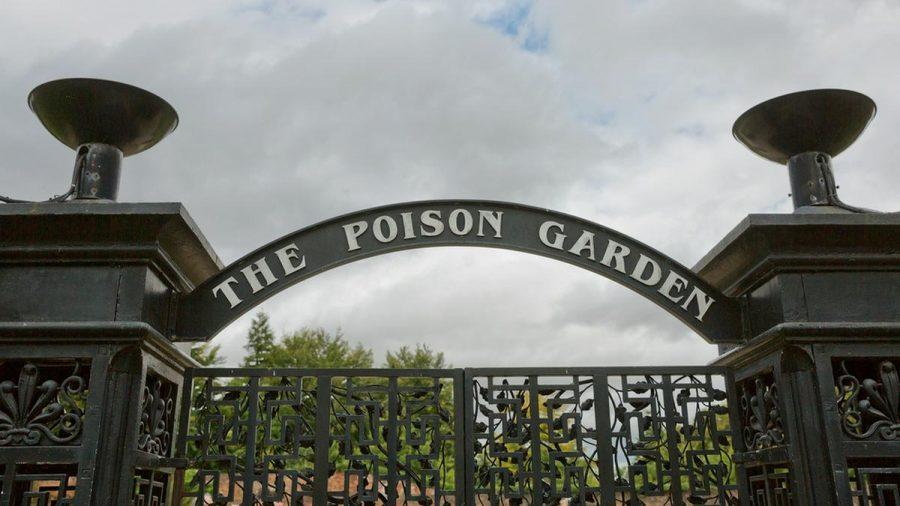 """Der """"Poison Garden"""" von Alnwick liegt in Northumberland im Nordosten Englands. (kms/spot)"""