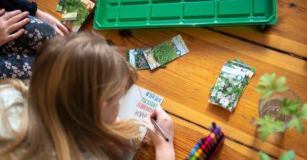 Bei dem Projekt können Kinder viel über das Wachstum von Pflanzen lernen.