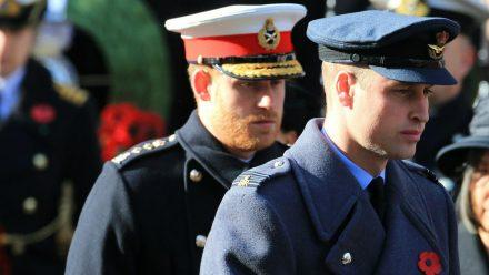 Wie steht es um das Verhältnis zwischen Prinz Harry (l.) und Bruder Prinz William? (jom/spot)