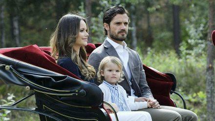 Carl Philip und Sofia von Schweden und Geburtstagskind Alexander (stk/spot)