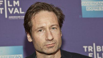 """David Duchovny wurde als Fox Mulder in """"Akte X - Die unheimlichen Fälle des FBI"""" berühmt. (ncz/spot)"""