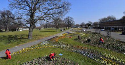 Auf dem Gelände der Bundesgartenschau in Erfurt soll auch dein Modellschulgarten entstehen.