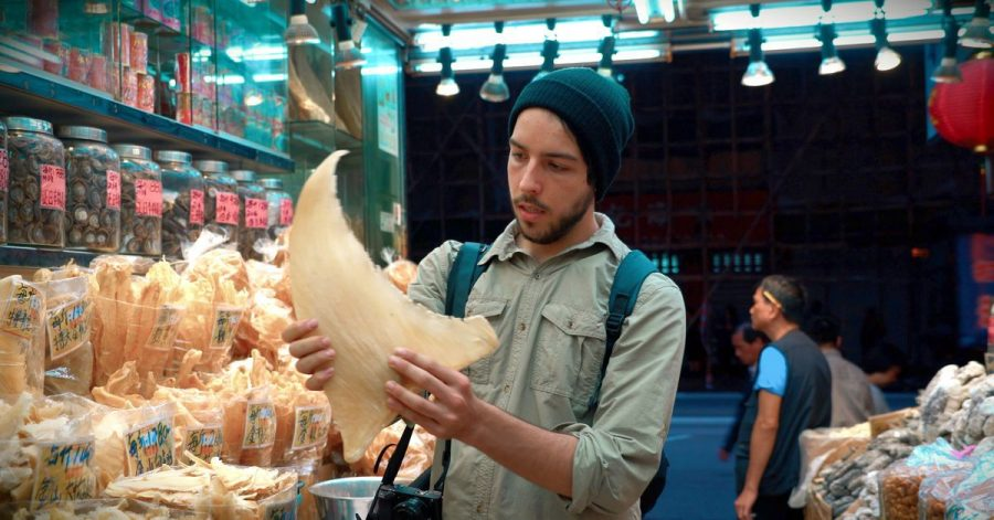 "Filmemacher Ali Tabrizi in einer Szene der Dokumentation ""Seaspiracy"" (undatierte Filmszene)."