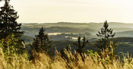 Der Döbraberg bietet einen hervorragendenAusblick über den Frankenwald.