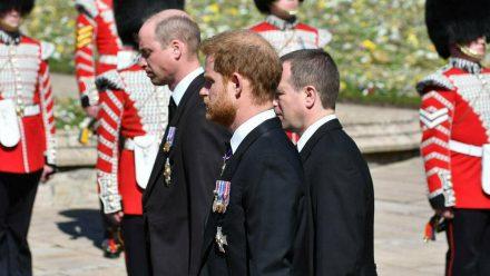 Prinz William (l.), Prinz Harry (m.) und Peter Phillips bei einer Prozession vor dem Trauergottesdienst für Prinz Philip (wue/spot)