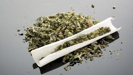 Diese vier Stars verkaufen Marihuana