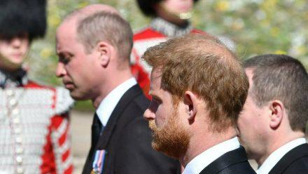 Die Brüder Prinz William (li.) und Prinz Harry sind zuletzt auf der Beerdigung von Prinz Philip im April aufeinander getroffen. (jru/spot)