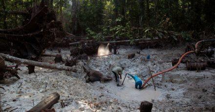 Einem Bericht zufolge zerstört der illegale Abbau von Gold zunehmend Indigenen-Gebiete im Norden Brasiliens.