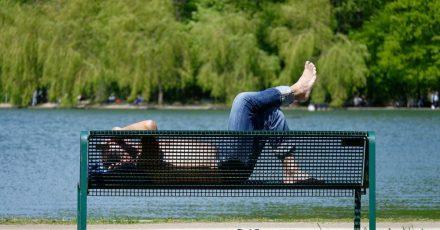 Ein Mann sonnt sich auf einer Bank im Kölner Stadtwald.