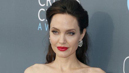 Angelina Jolie setzt sich für den Tierschutz ein. (jom/spot)