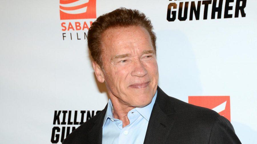 Arnold Schwarzenegger wird bald als CIA-Spion bei Netflix zu sehen sein (stk/spot)
