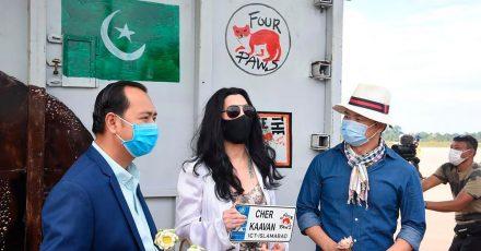 Cher (M), Sängerin aus den USA, wartet mit Begrüßungsschild auf den Elefanten Kaavan, der auf dem internationalen Flughafen Siem Reap (Kambodscha) eintrifft (2020). Cher wird jetzt 75.