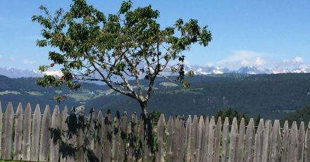 Blick auf die Alpen von der kleinen italienischen Gemeinde Ritten in Südtirol.