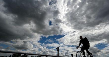 Ein Radfahrer ist am Mainzer Rheinufer unterwegs.